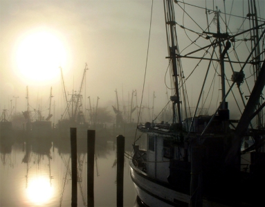 Ghost Fleet, Apalachicola, Florida, USA