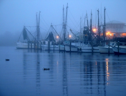 Shrimper Fleet, Apalachicola, Florida, USA