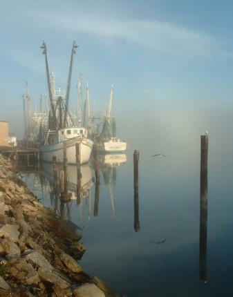 Shrimp Boats, Apalachicola, Florida, USA
